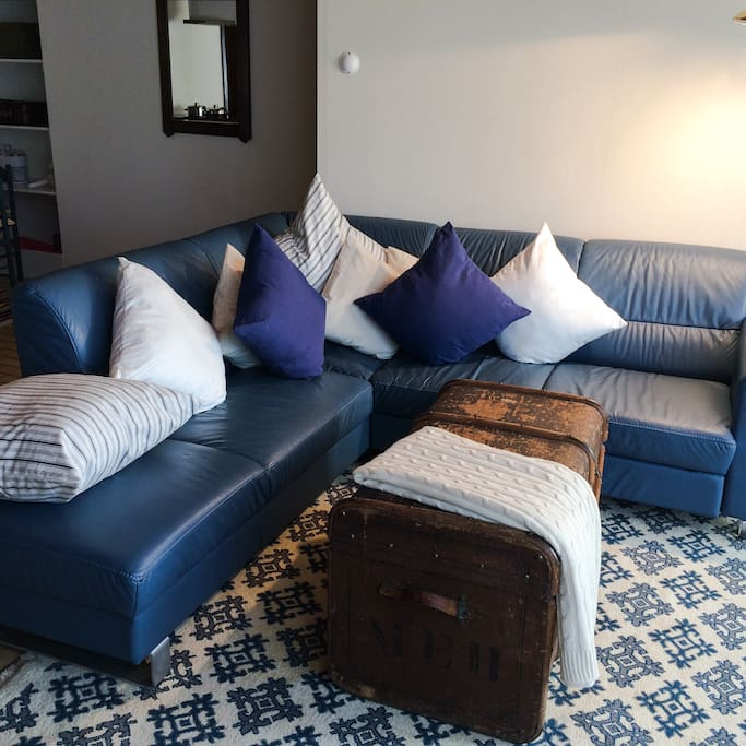 Comfy sofa with pull out bed
