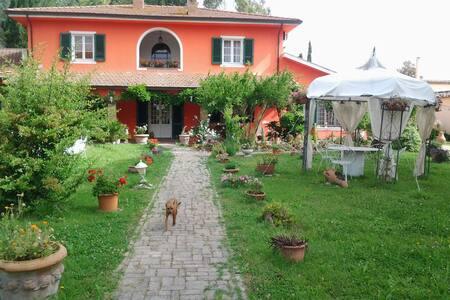 villa con giardino x 15 persone - Crocino - Bed & Breakfast