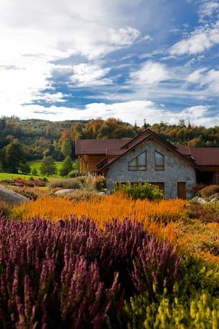 Bnb La Forestière - Le Hohwald
