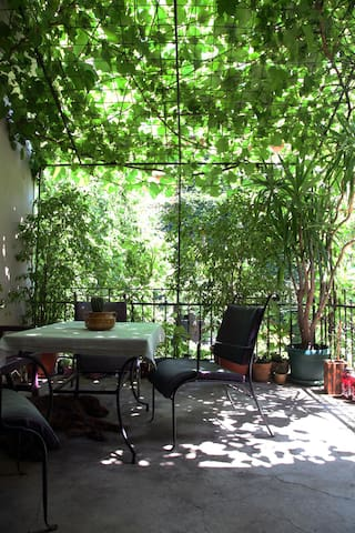 Quiet garden in heart of the city - Subotica - บ้าน