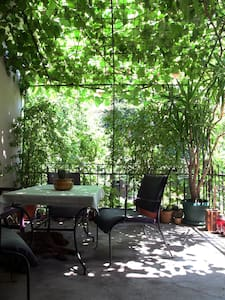 Quiet garden in heart of the city