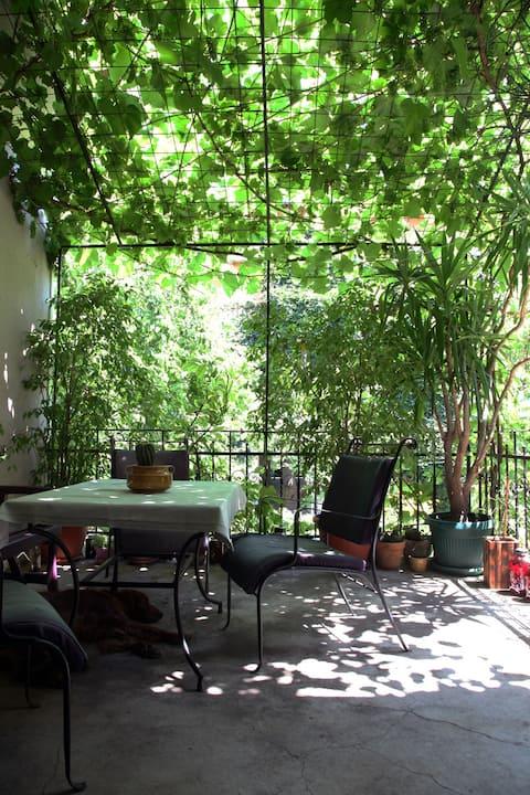 Quiet garden in heart of the city