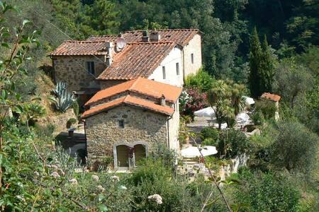 """Toskana """"Paradiso Monte a Pescia"""" - Pescia - House"""