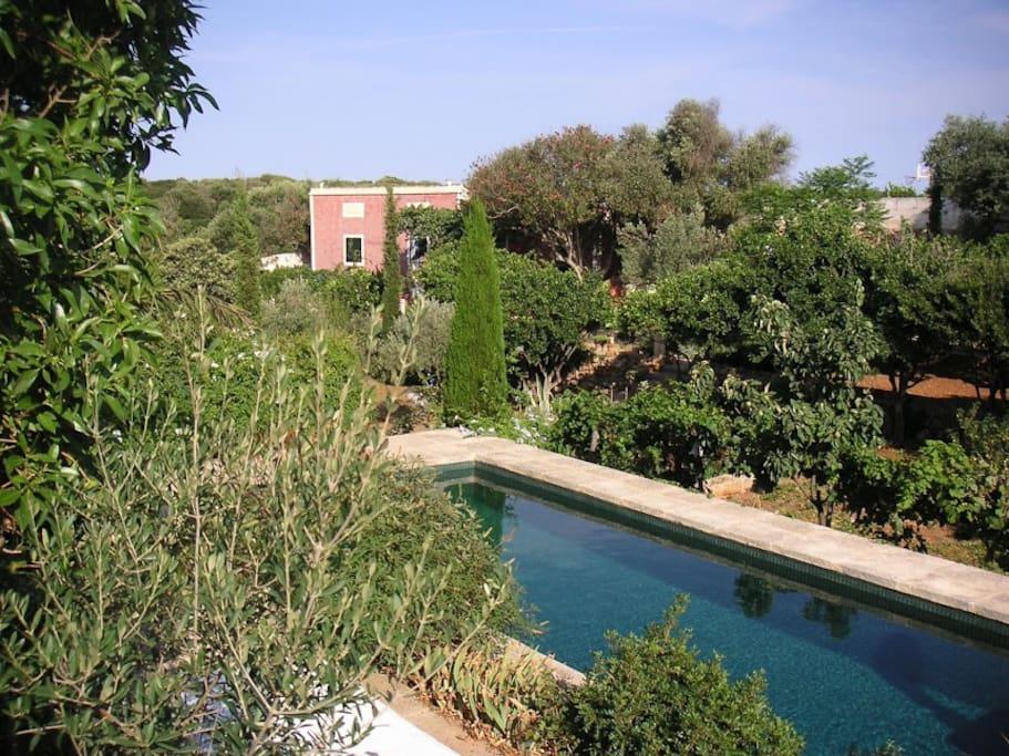 Villa mediterraneene avec piscine maisons louer for Piscine baleares