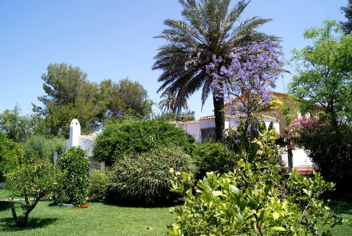 Mediterrane villa with private pool - Alicante - Hus