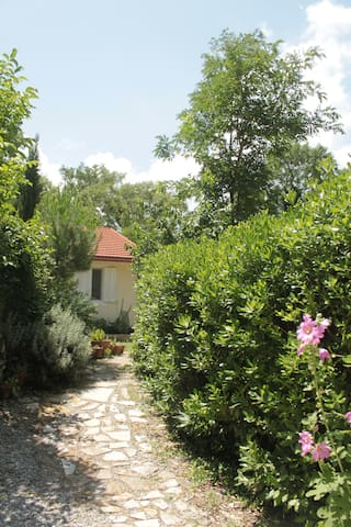 peaceful house and garden in Kotor - Kotor - Ev