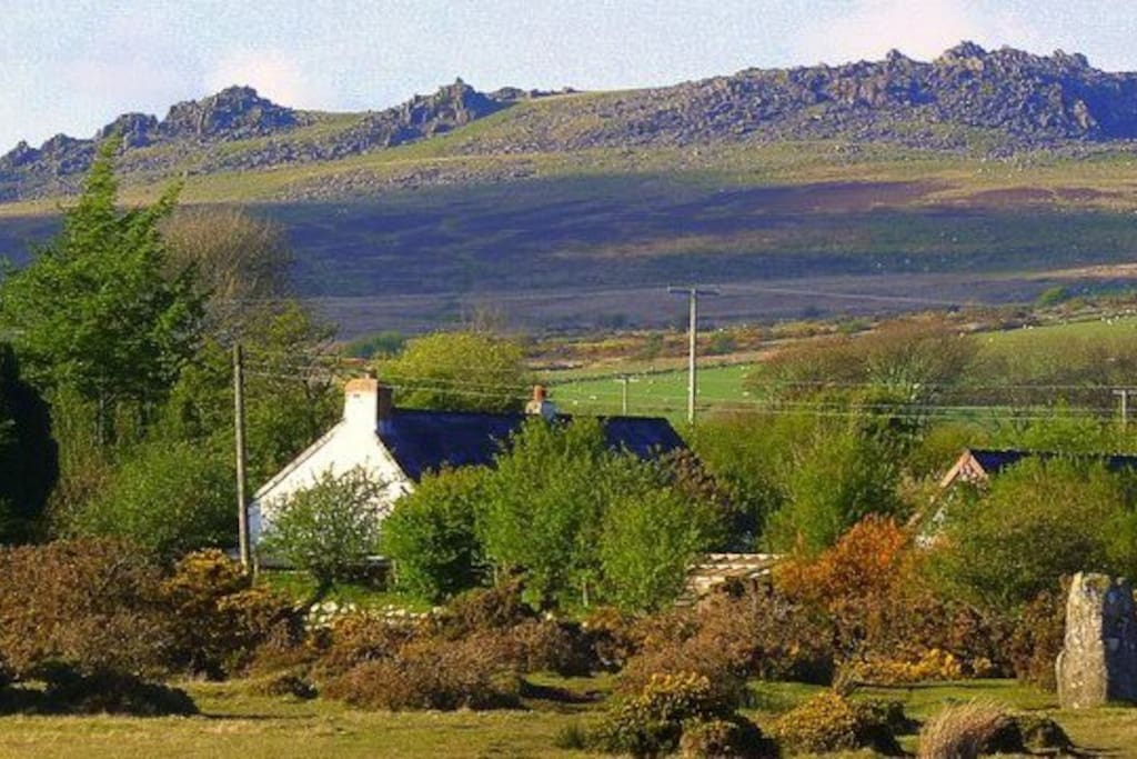...This is the magical Bluestone Country -Trallwyn Cottages + studio just 5 minutes walk from the ancient stonecircle