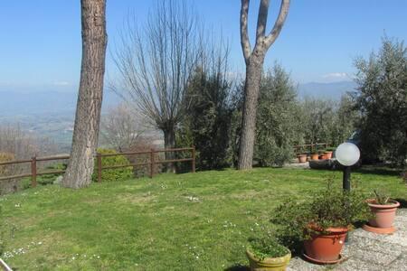 FIENILE in collina - Vicchio