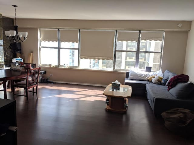 Nice condo on Lake Michigan for long term stay