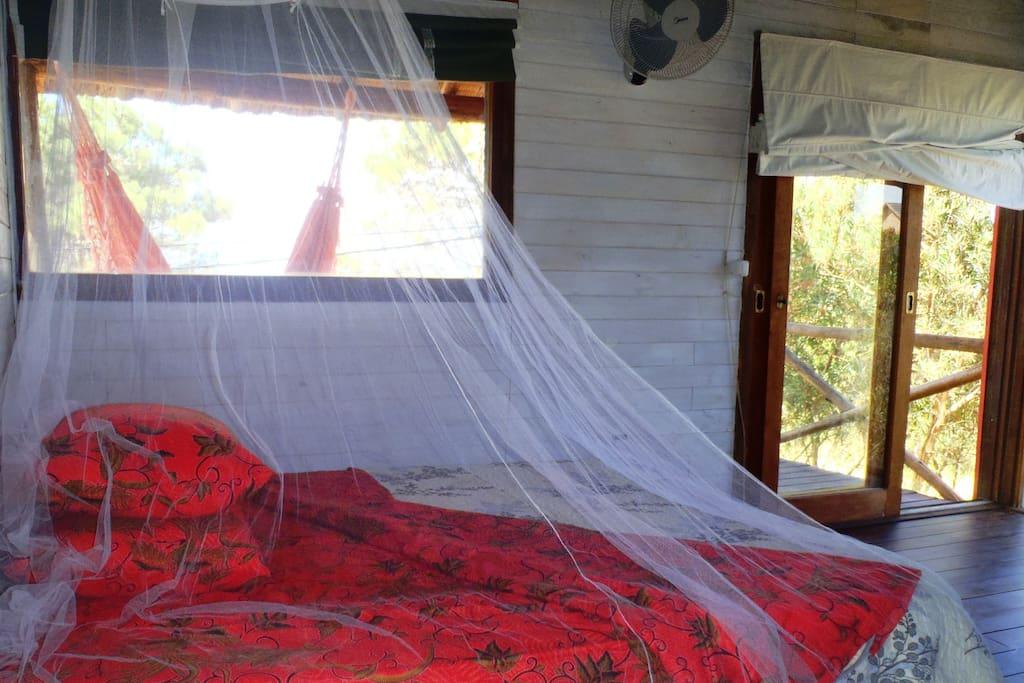 Room Acacia