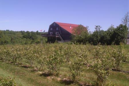 Barn Conversion in vineyard(Two) - Bear River