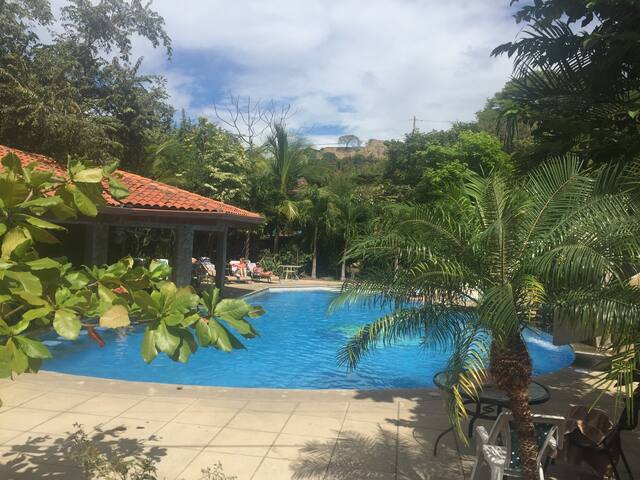 Beautiful Villa in Playa Hermosa! - Playa Hermosa - 別荘