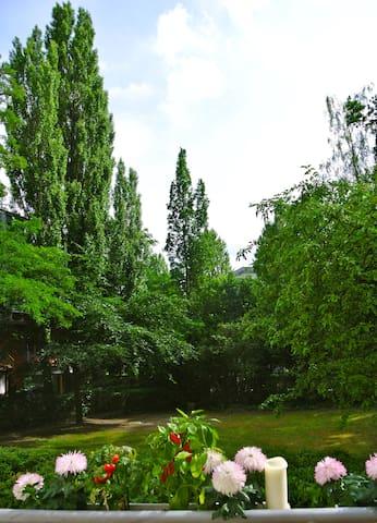Grüne Oase mitten im  Zentrum  - Berlin - Ev