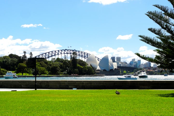 Darling Point Apartment: Value, Space & Location!