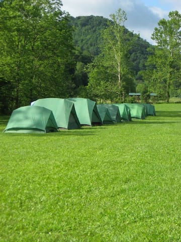 Pitch Your Tent! (Primitive) #06 - Berea - Tenda de campanya