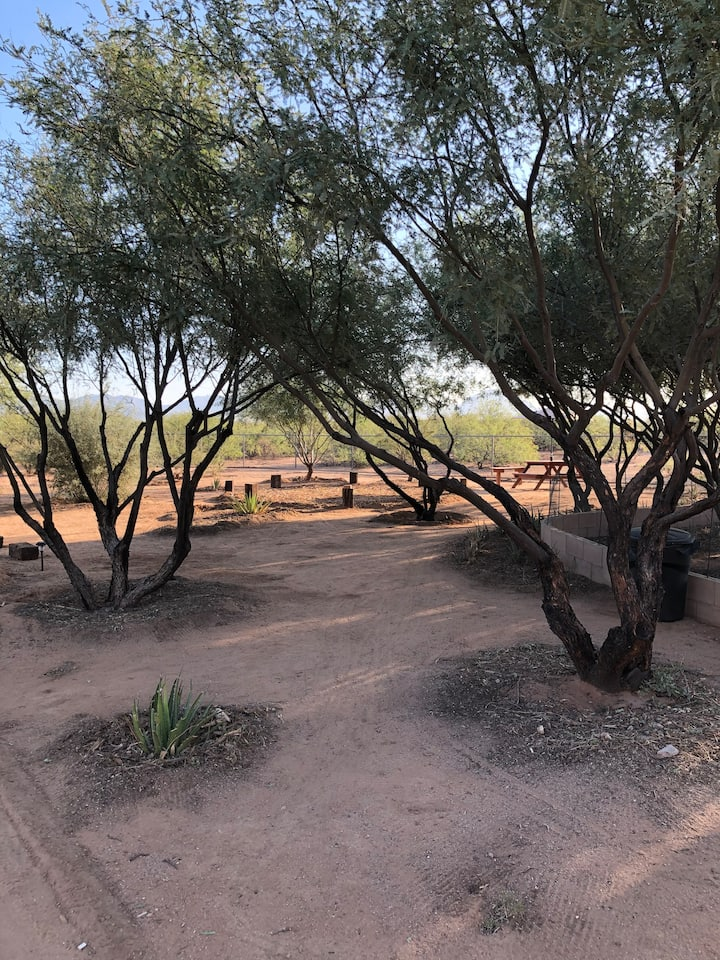 Private campsite near Saguaro National Park West