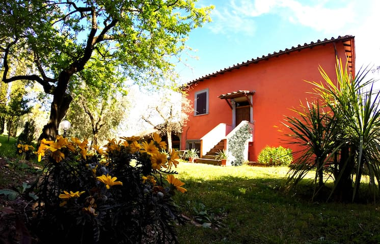 Podere Paradiso - Country house - Montopoli di Sabina - Dům