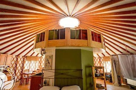 Creative, fun, cozy Yurt