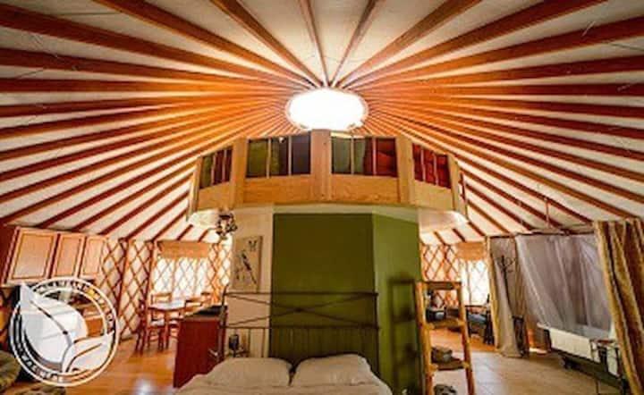 Creative, fun, cozy Yurt