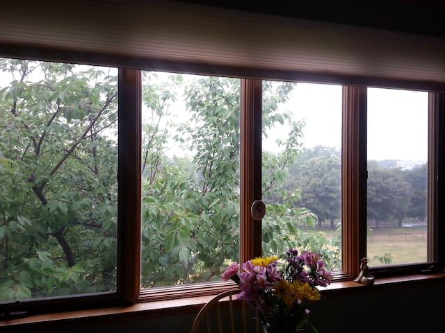 Bright private room near Boston - Watertown - Leilighet