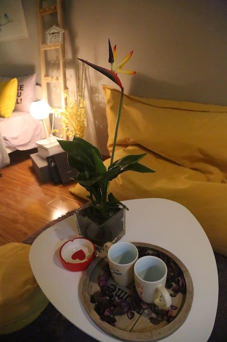 植物让房间充满生机