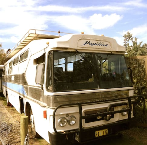 Waminda Wildlife Sanctuary Bus - Geraldton - Bed & Breakfast