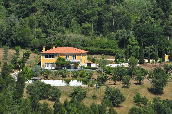 Villa among vineyards and cork oaks - Gradil - Villa