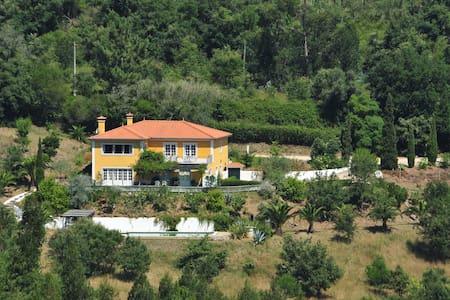 Villa among vineyards and cork oaks - Gradil