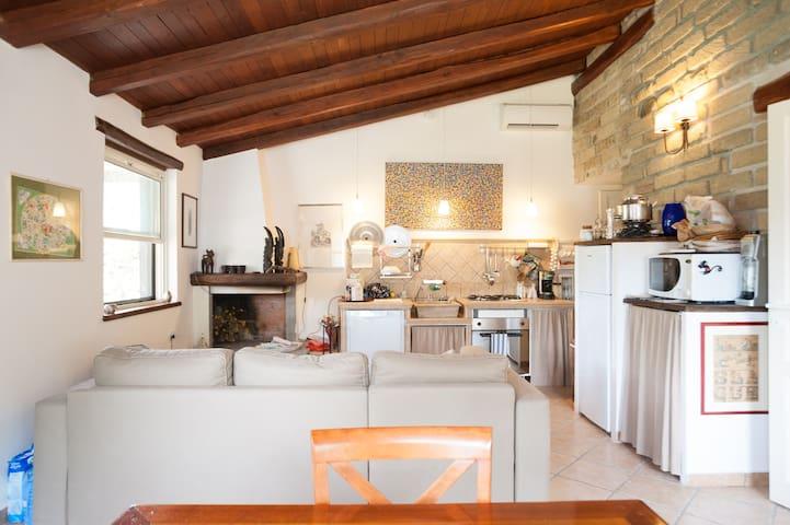 Villa with park and private beach - Trevignano Romano - Villa