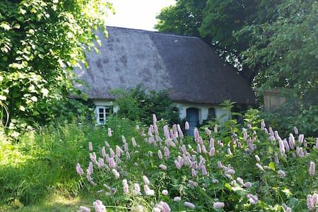 Urlaub in Nordfriesland - Enge-Sande