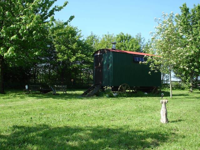 Cotswolds Glamping - Shepherd's Hut