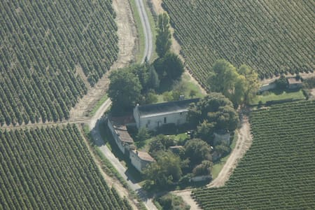 B&B Saumur Vineyards Loire Valley - 索米尔 (Saumur) - 住宿加早餐