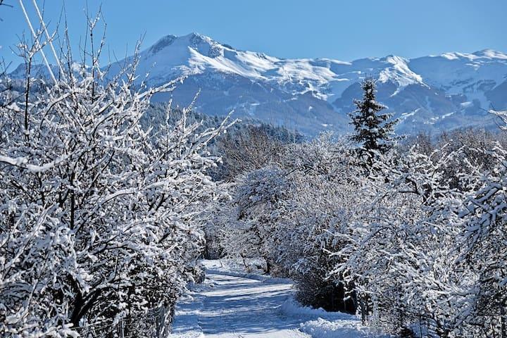 Lovely house close ski ressort