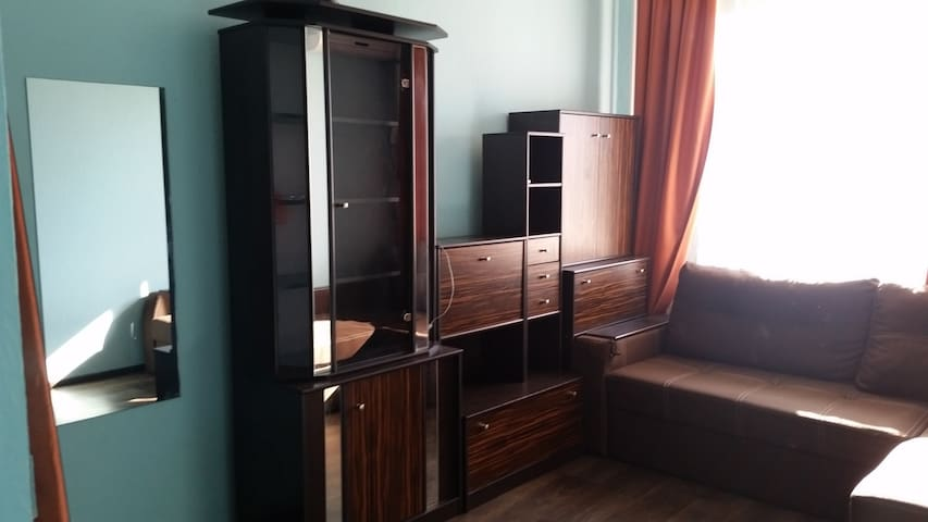 1 room Appartment Kiev, Troeshyna