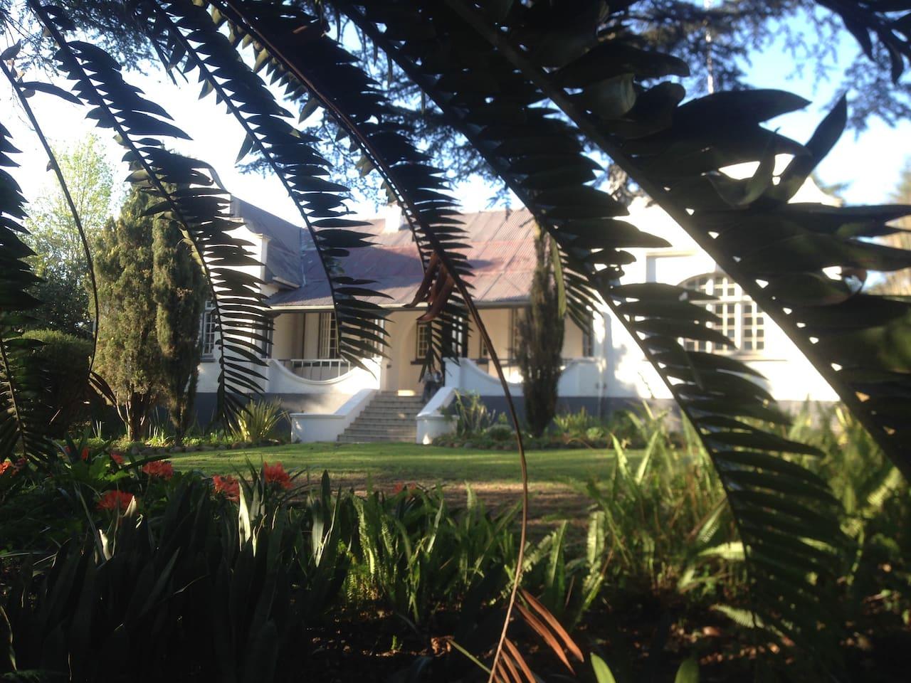 1906 on Hill B&B Beautiful front Garden.
