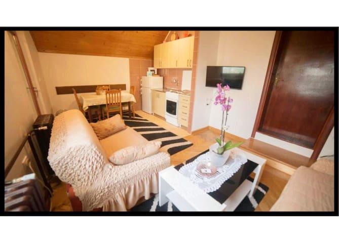 Apartments Marjanovic 2