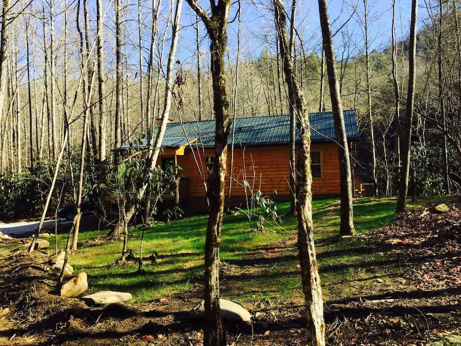 Front yard at Cabin #7