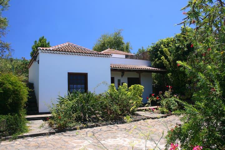 Casa La Oliva - Puntagorda - Hus