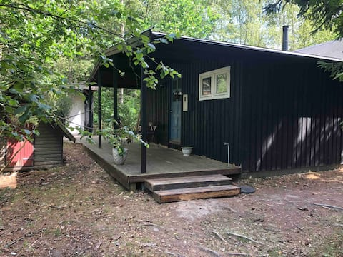 Spacious and kid-friendly cottage