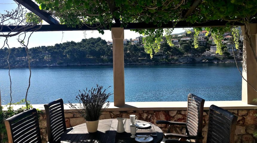 Seafront apartment with a great view