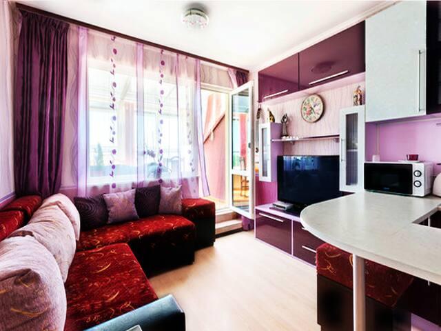 Комната в лиловых нежных тонах. Обои ПВЦ новой модификации, 1м большой телевизор, мебельный гарнитур, мягкий раскладной диван из комбинированной с тканью кожей и большими подушками..