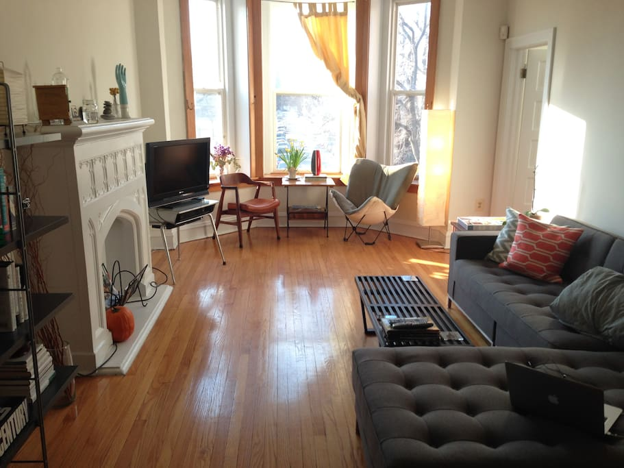 Comfy living room with window overlooking the park
