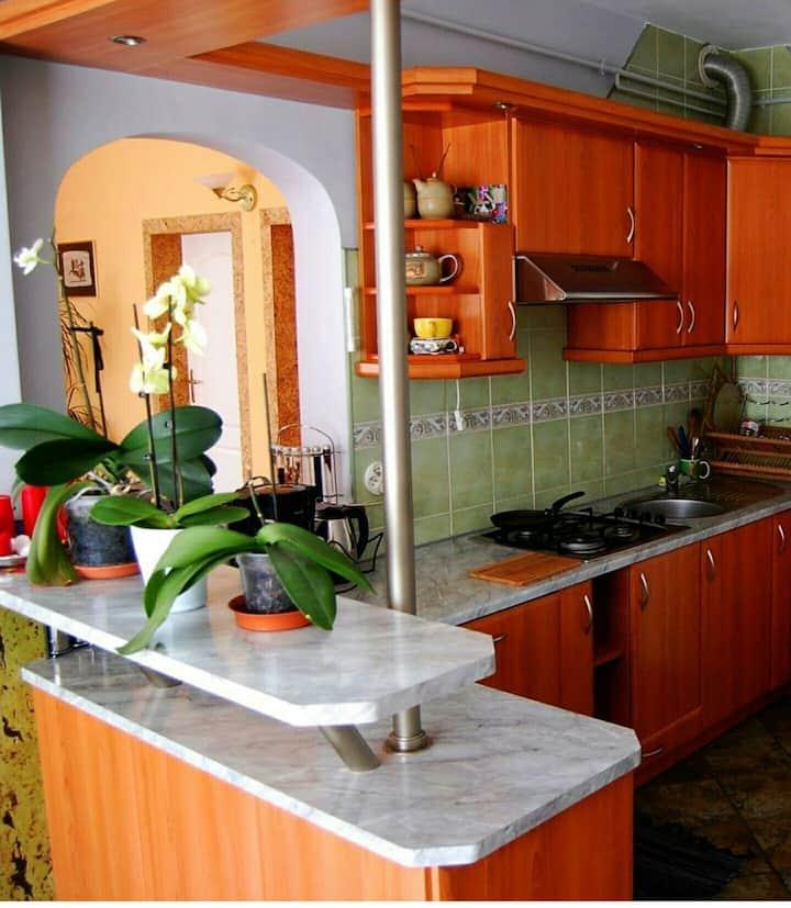 Bieszczdy Apartament Lesko