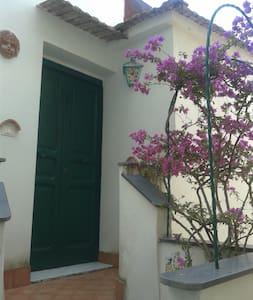 Amalfi-Coast Cetara - Cetara - 公寓