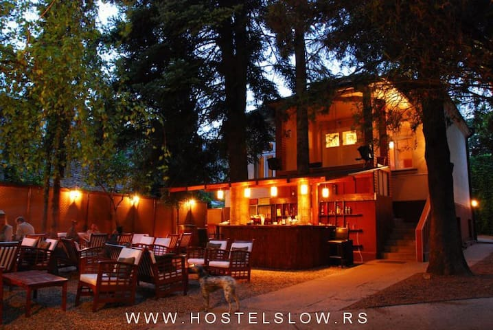 Classic slow house in greenery ( 12 beds ) - Belgrade - House