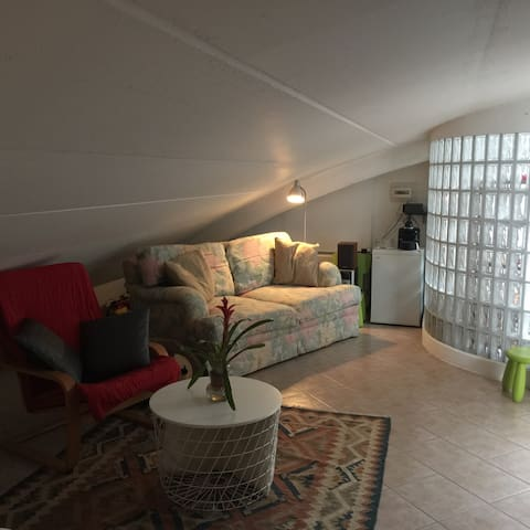 Wonderful Attic in quiet center zone of Viareggio - Viareggio - Lejlighed