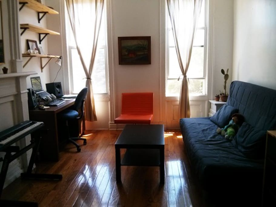 Living room and Ikea sofa bed (which opens up to a full size bed - sleeps two)