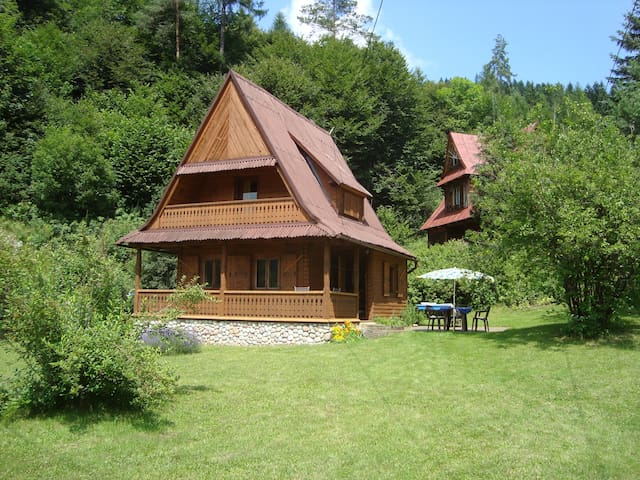 Drewniany domek nad rzeką koło Krynicy zdrój