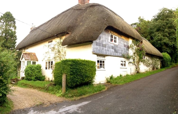 Room nr Winchester, Pretty thatch. - Wonston - Bed & Breakfast