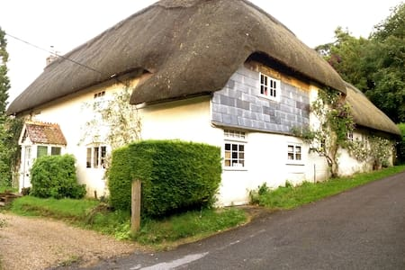 Room nr Winchester, Pretty thatch. - Wonston